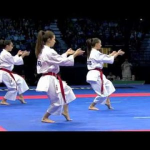 Circuit canadien de kata junior